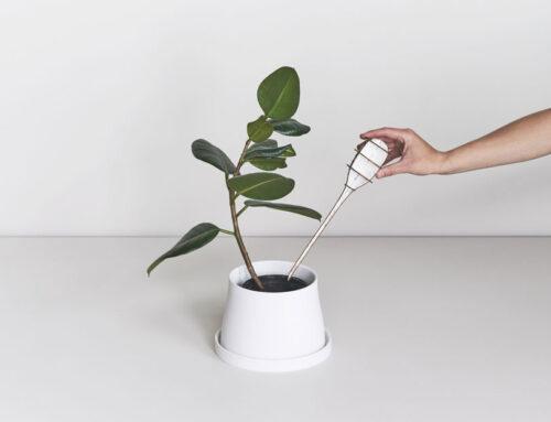 Lo studio di architettura Snøhetta disegna un mondo di piante per Georg Jensen