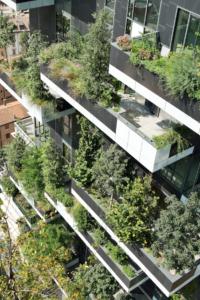 Il Bosco Verticale, Milano. Foto Paolo Rosselli