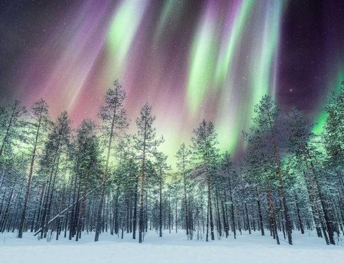 Tutti al Circolo Polare Artico per vedere l'aurora boreale