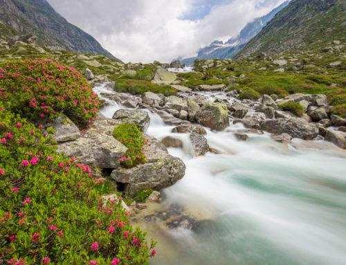 Unesco: Valle Camonica-Alto Sebino e Monte Peglia tra le nuove Riserve della biosfera